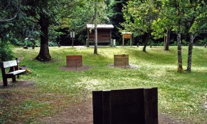 Horseshoe pits in day use area
