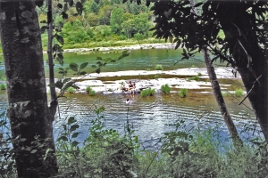 Campground swimmers in the Umpqua River