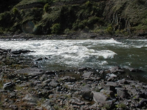 Narrows Rapid, 6000 cfs