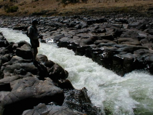 Narrows Rapid, 500 cfs