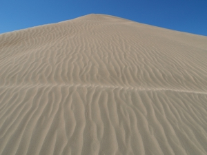 Christmas Valley Sand Dunes