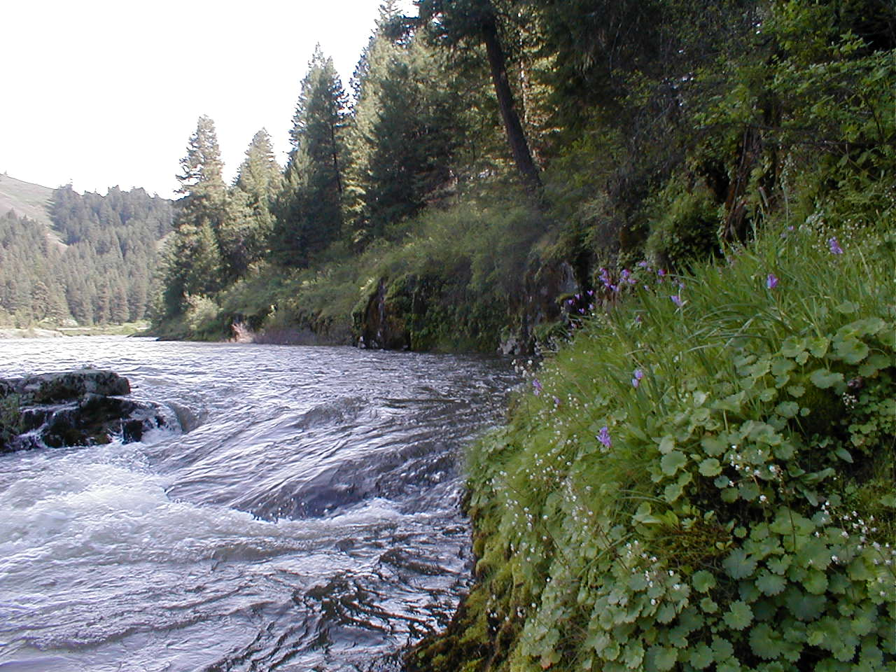 Wallowa and Grande Ronde Wild and Scenic Rivers