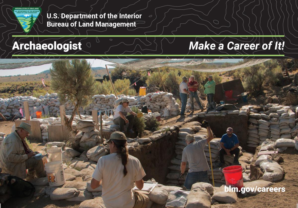 Archaeologist Career Card