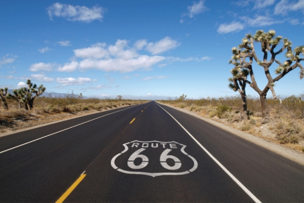 The Route 66 highway symbol is painted on the road through a desert landscape with Joshua Trees. BLM photo.