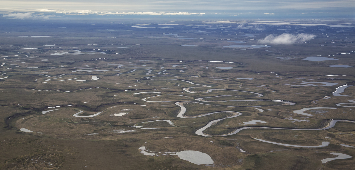 Aerial photo of the tundra and rivers of the Northeast National Petroleum Reserve in Alaska.