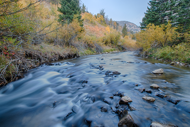 A river running through Fort Blacktail Wilderness Study Area. Photo by Bob Wick.