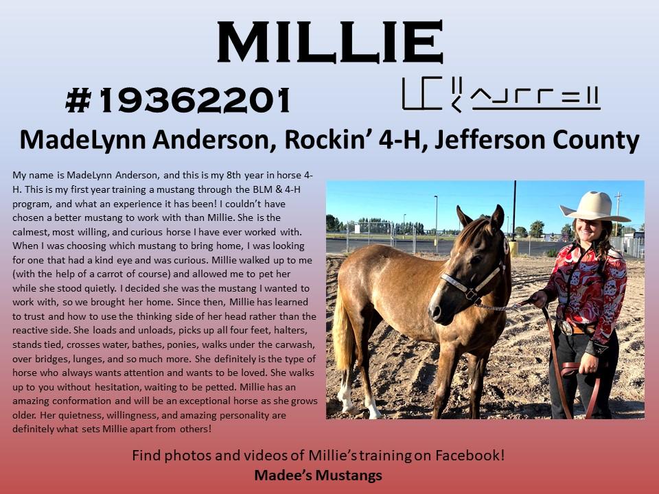 Milllie