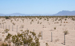 desert landscape with fence and shrubs