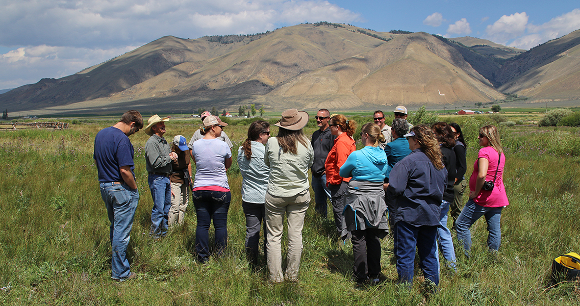 """BLM employees and partners tour  fish habitat restoration projects around Challis and Salmon, Idaho. BLM photo.  """