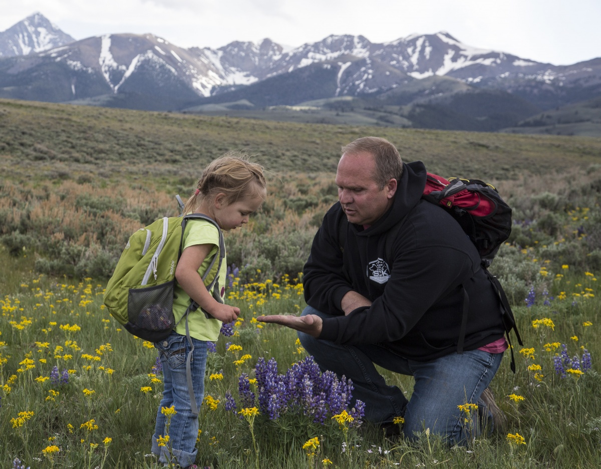 A man stoops down to show a female child a flower in the middle of a field of yellow and purple flowers.