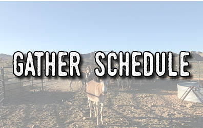 A pen with burros and the words Gather Schedule