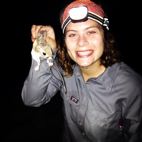 An intern holds a kangaroo rat.  BLM photo.