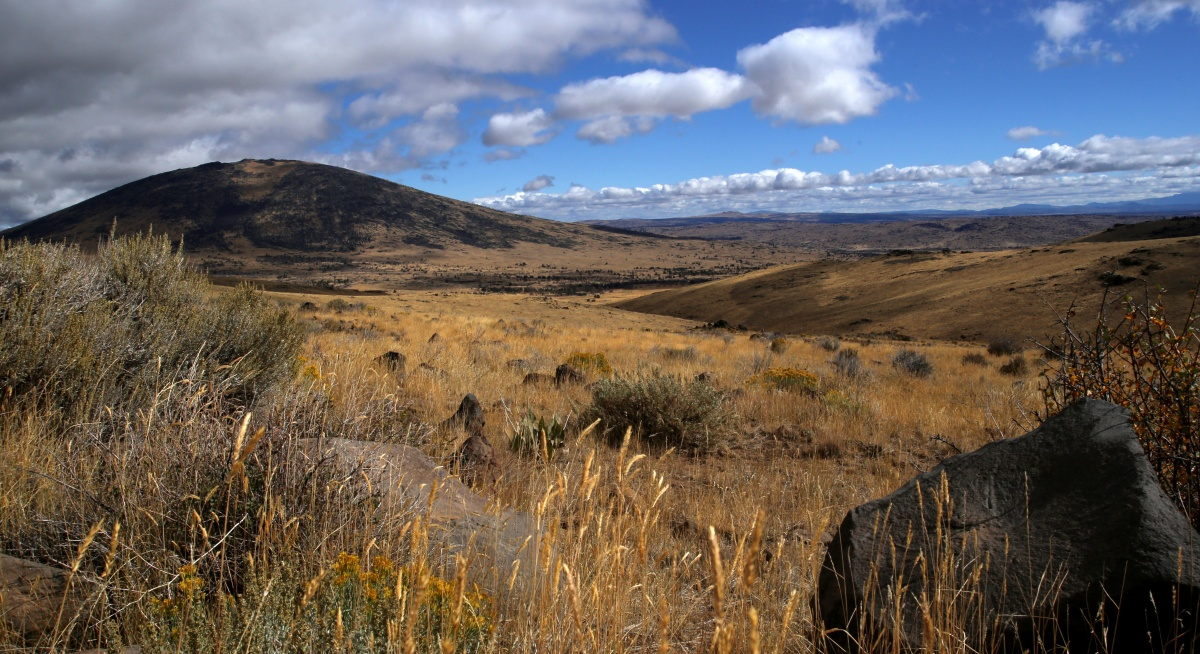 Sagegrouse habitat in California. BLM photo