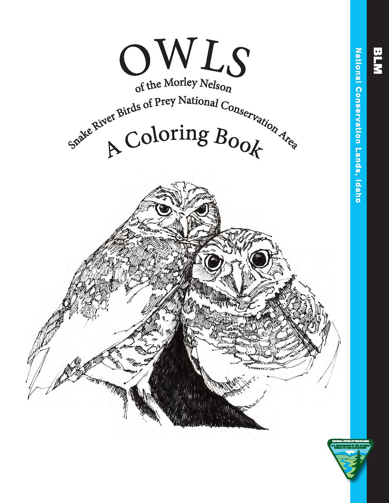 Morley Nelson Snake River Birds Of Prey Owl Coloring Book