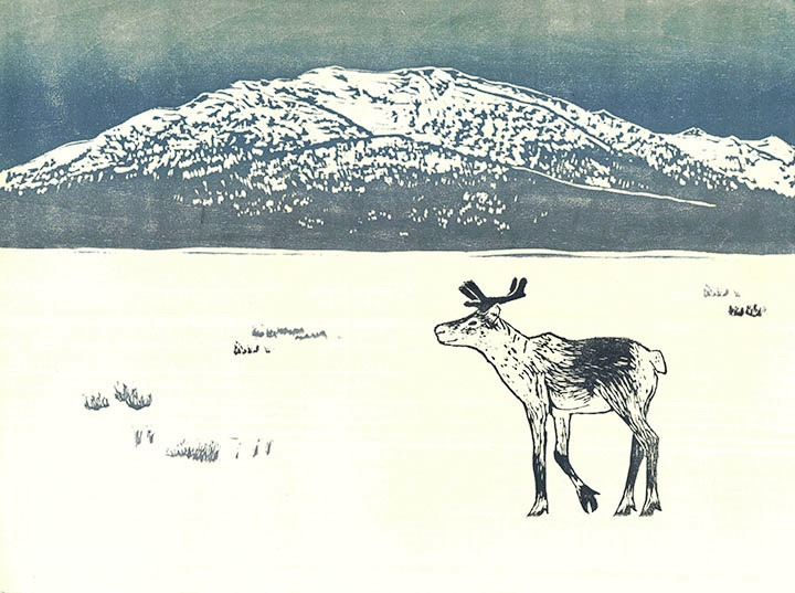 Teal Francis Caribou and Coldfoot Mountain Artwork