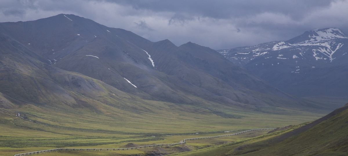 Oil and gas pipeline along the Dalton Highway in Alaska. Photo by Bob Wick, BLM.