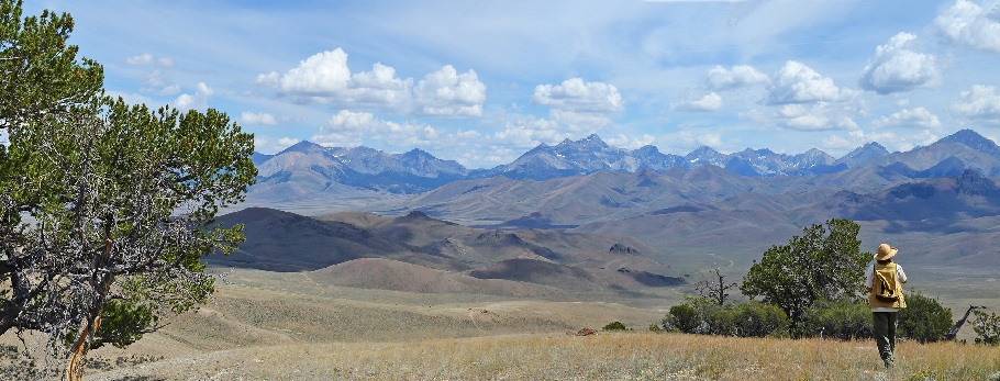 A woman takes in the landscape of Upper Pahsimeroi Valley in Idaho. Photo by A. Hedrick