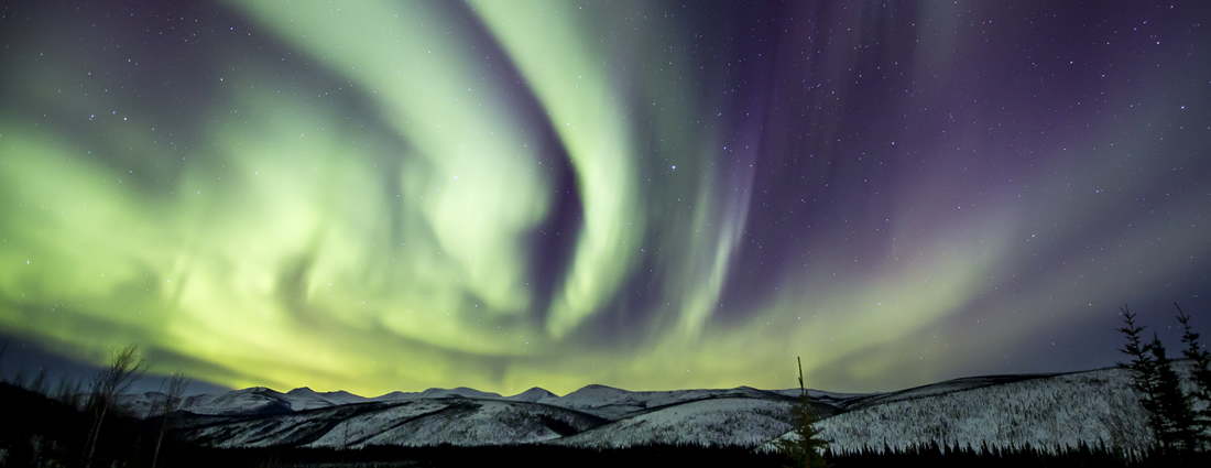 Northern Lights glow and dance above the trees along the Gulkana Wild and Scenic River.