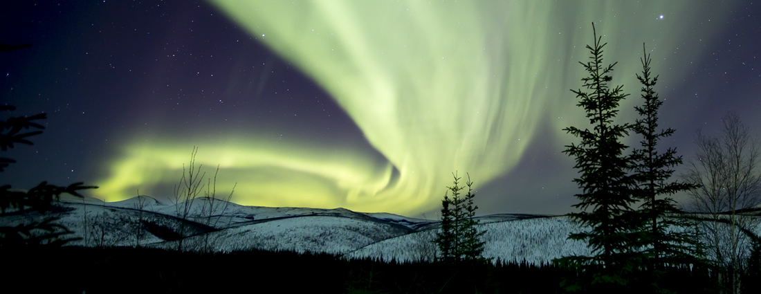 Green northern lights in the drak night skies over the White Mountains National Recreation Area
