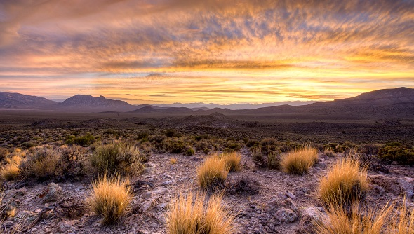 A landscape view of Basin and Range National Monument in Nevada.  Photo by Bob Wick.