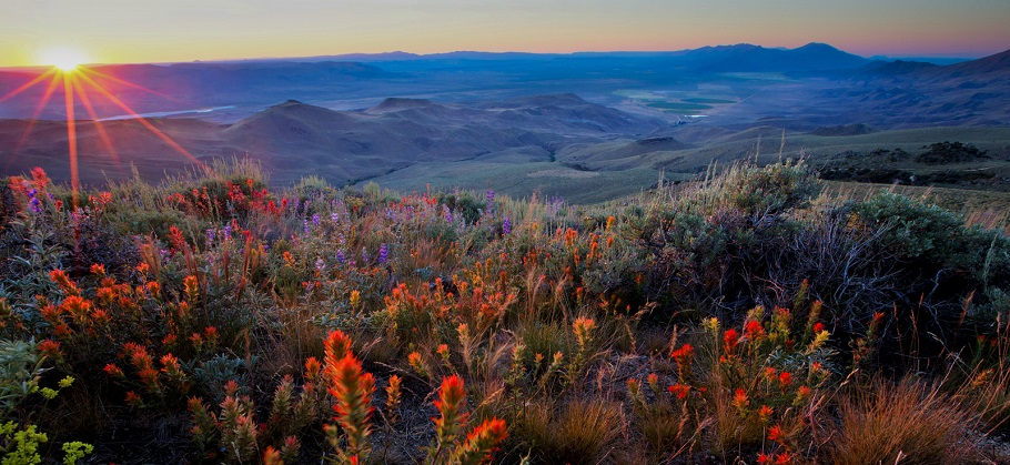 A landscape view of Pine Forest Range in Nevada.  Photo by Bob Wick, BLM