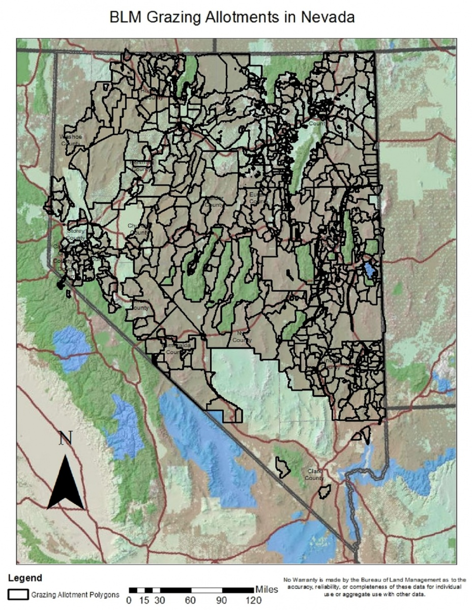 A grazing map of Nevada