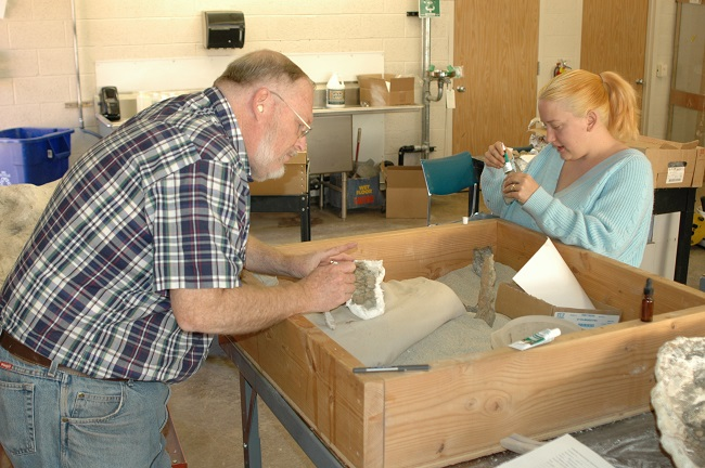 Two volunteers examining fossils.