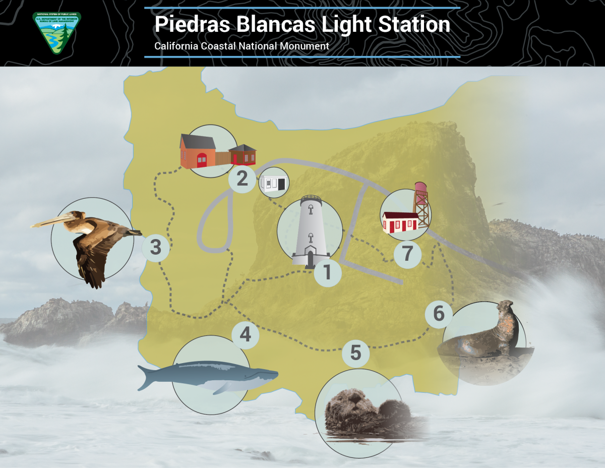 Iluustration of Piedras Blancas Light Station Map