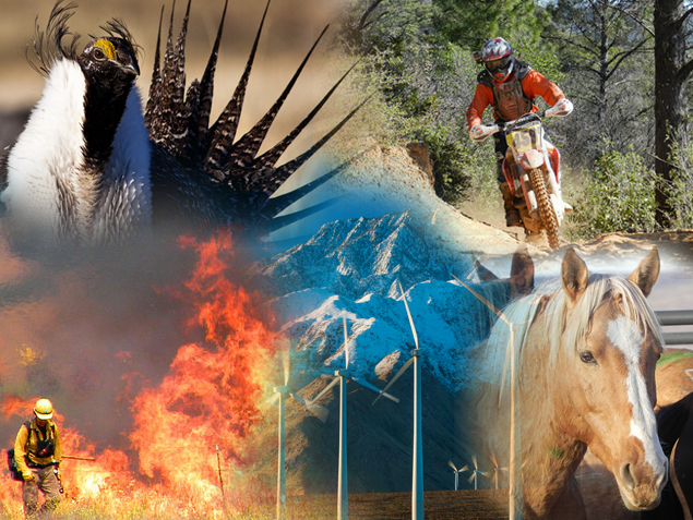 A collage of multiple-use on public lands - sage grouse, off road motorcycle, wildfire, conservation lands, wind turbines, and wild horses.