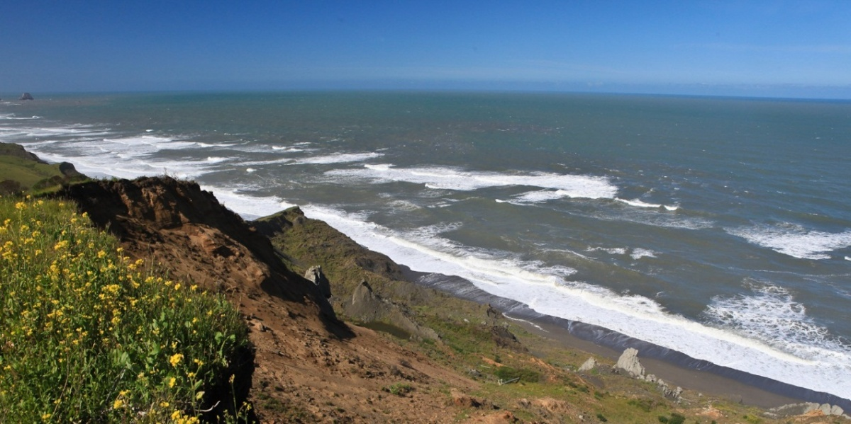 The beautiful green coastline of Lost Coast Headlands (Photo by Bob Wick, BLM)