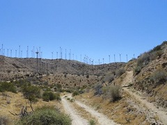 Wind turbines on a desert ridge. Photo courtesy of Aspen Environmental Group.