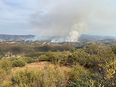 A wildfire in a sage covered hills.