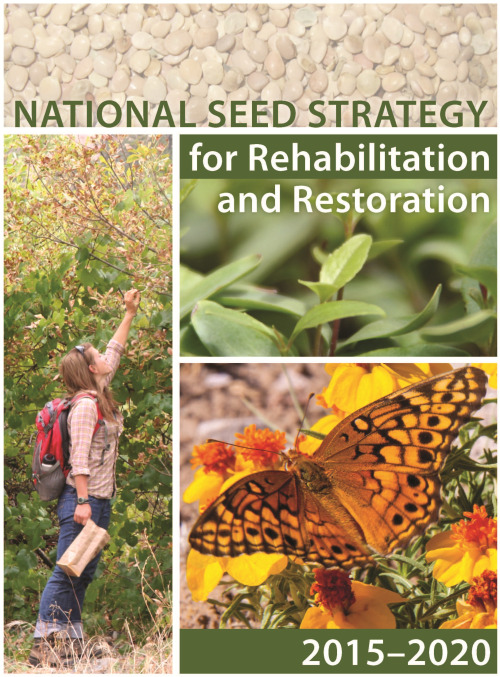national seed strategy cover photo