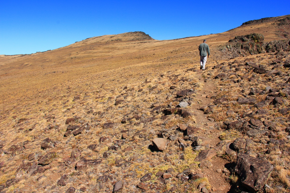Oregon washington soil program bureau of land management for Natural resources soil uses