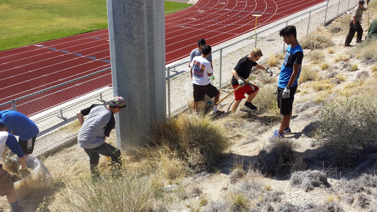 Volunteers removing fountaingrass at Laughlin High School.