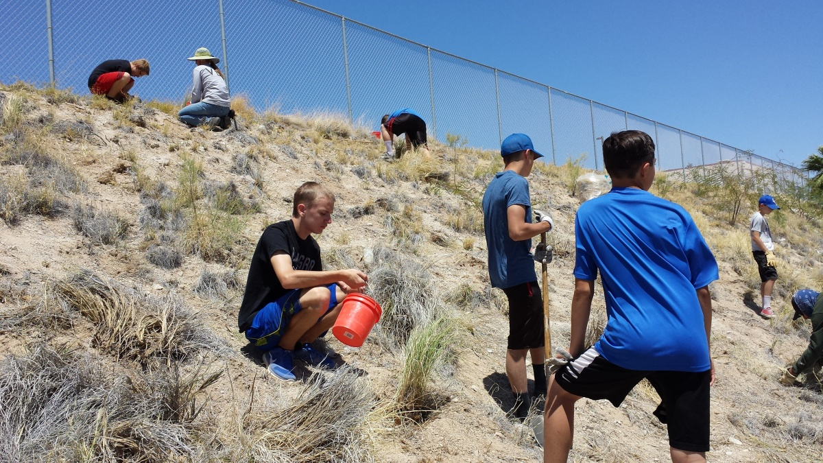 Volunteers plant native grasses at Laughlin High School.
