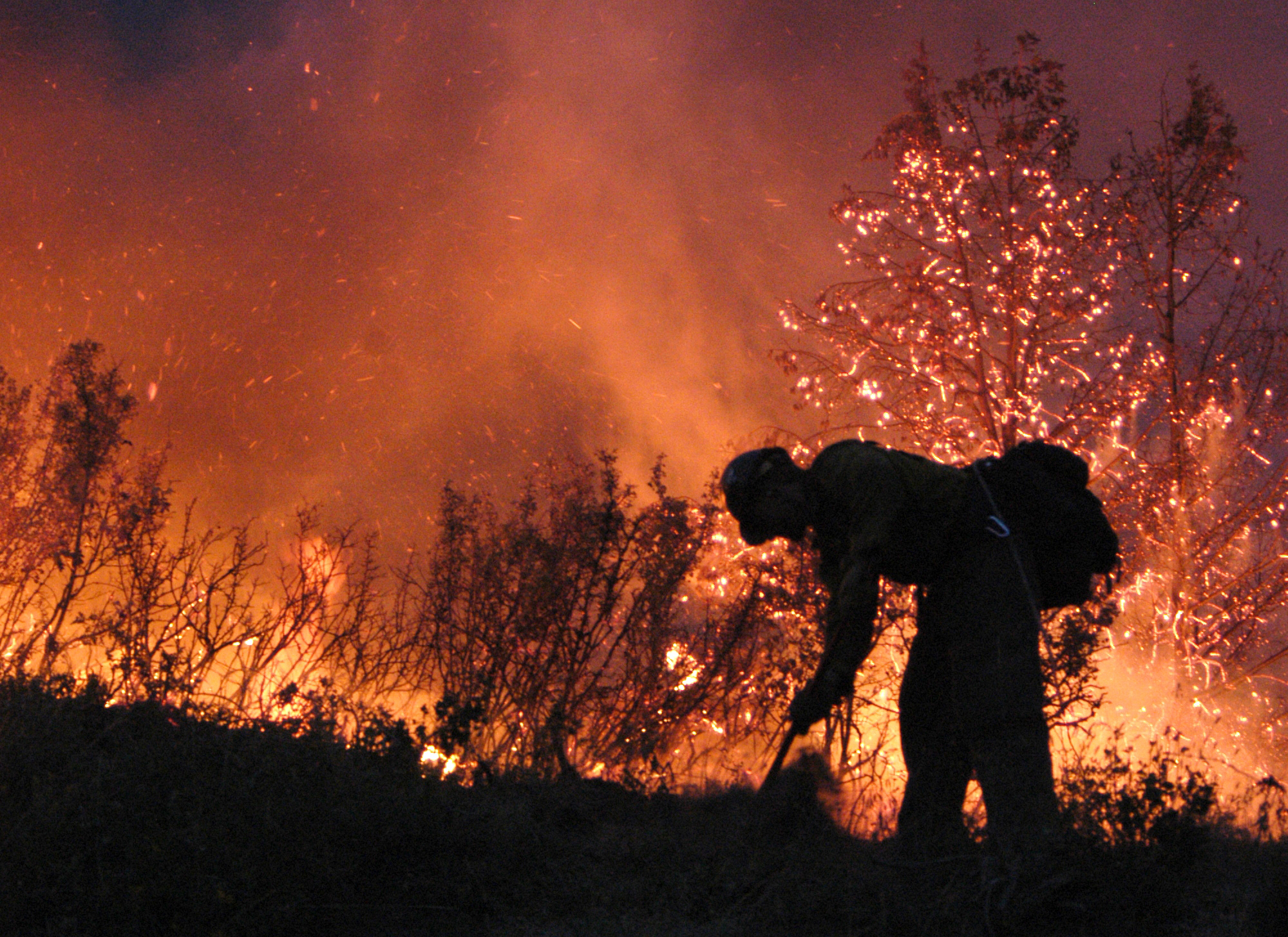 Firefighter works the line during a scrub fire.