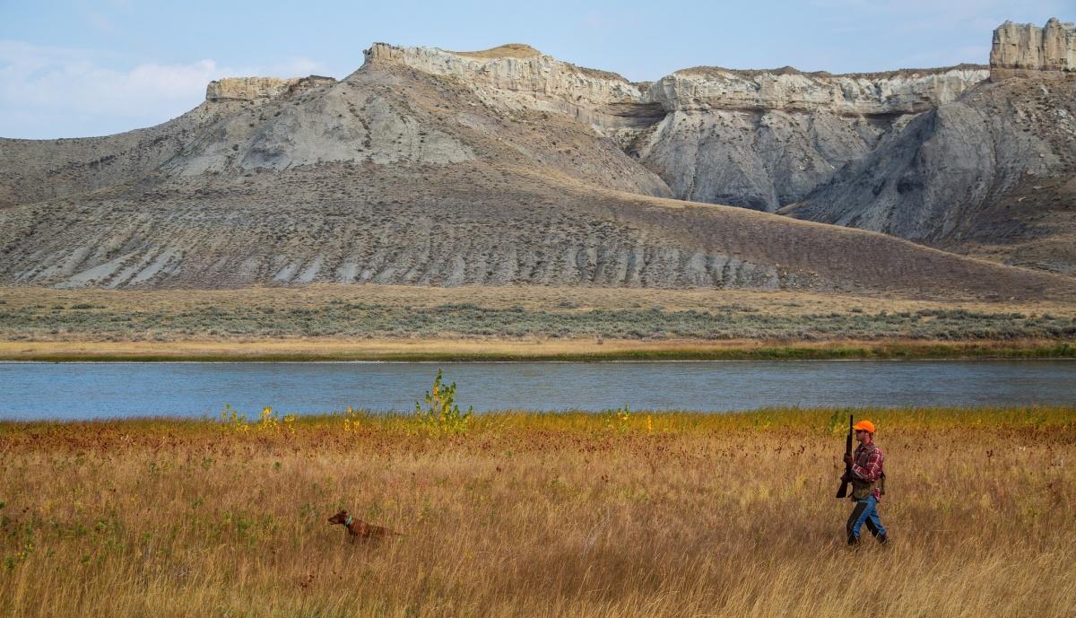 Long range shooting BLM land Las Vegas, Nevada   Long ...   Blm Nevada Shooting