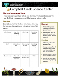 Nature Scavenger Hunt Activity sheet