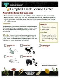 Animal Evidence Extravaganza Nature Learning Activity Sheet