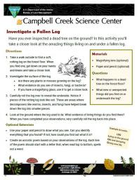 Investigate a Fallen Log Nature Learning Activity Sheet