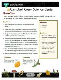 Meet a Tree Nature Learning Activity sheet