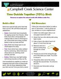 TOTs Birds Activity sheet