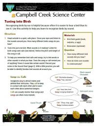 Tuning into Birds Nature Learning Activity sheet