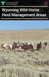 The cover of the HMA brochure featuring a small herd of wild horses in a sagebrush environment