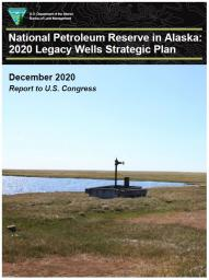 Cover of National Petroleum Reserve in Alaska: 2020 Legacy Wells Strategic Plan