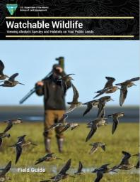 Cover of Watchable Wildlife: Viewing Alaska's Species and Habitats on Your Public Lands brochure