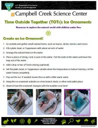 TOTs Ice Ornament Activity sheet