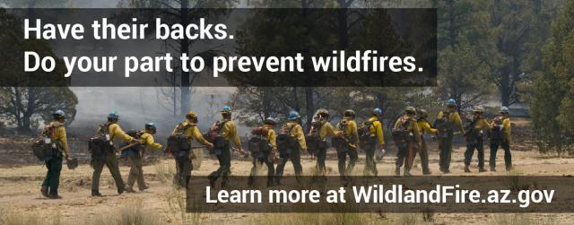 Dry conditions trigger increased fire restrictions on BLM lands in Arizona