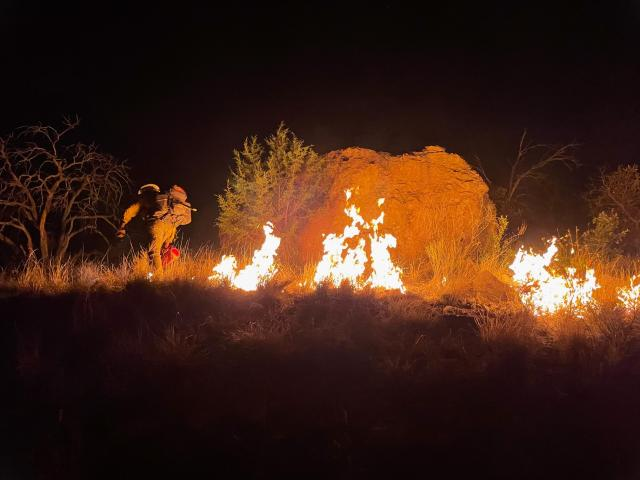 A firefighter is silhouetted by flames at night